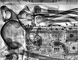 Рентгеновский снимок - кости в сумке