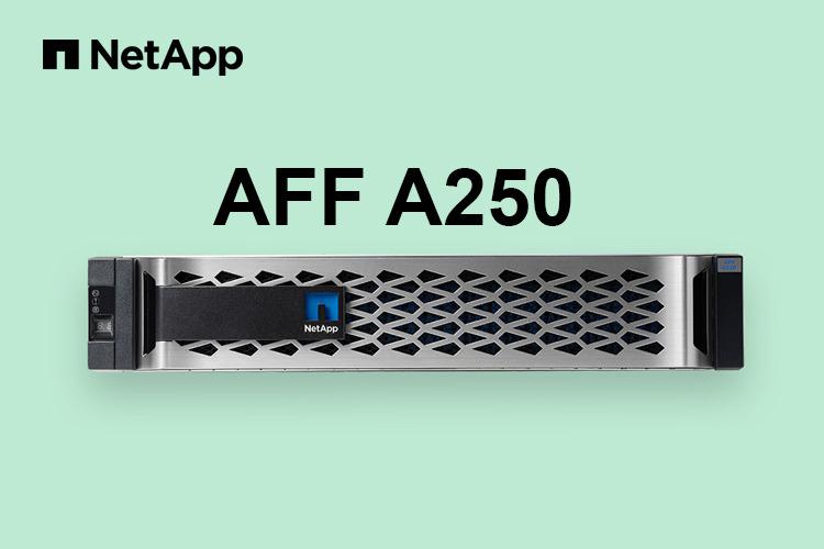 СХД начального уровня NetApp AFF A250