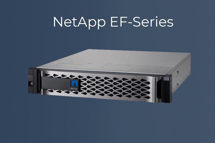 NetApp-EF-Family-mini