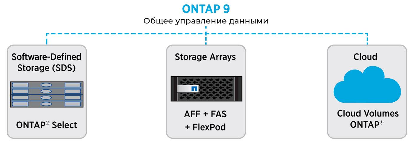 NetApp ONTAP Общее управление данными