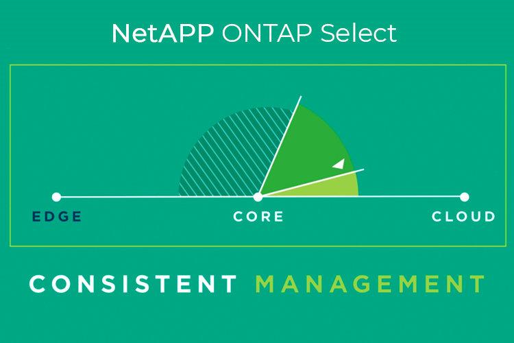 NetApp-ONTAP-Selec-minit